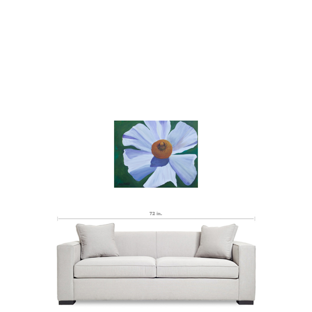 Matilija Poppy Canvas Art Print 24x30