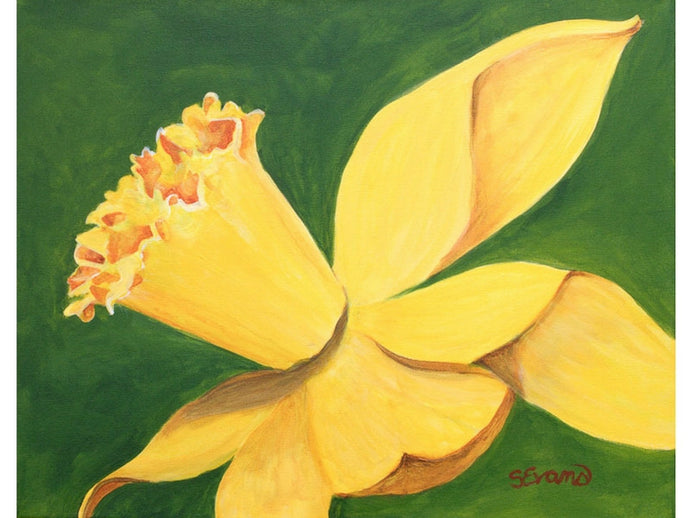 yellow daffodil painting