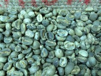 History of Coffee In Sumatra