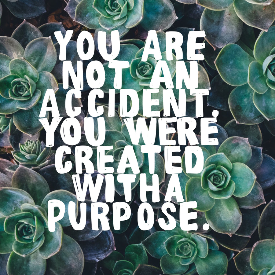 You Are Created With A Purpose