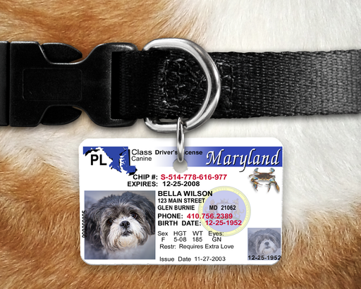 MD Pet Identification Tag - Inspired by the Maryland Drivers License, Pet ID Tags, Personally Yours Accessories