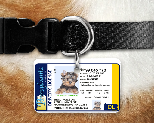 PA Pet Identification Tag - Inspired by the Pennsylvania Drivers License