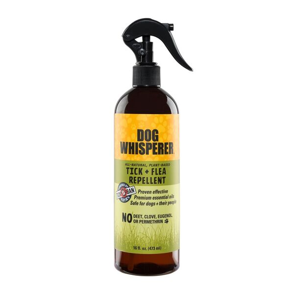 Dog Whisperer TICK + FLEA repellent 16 oz