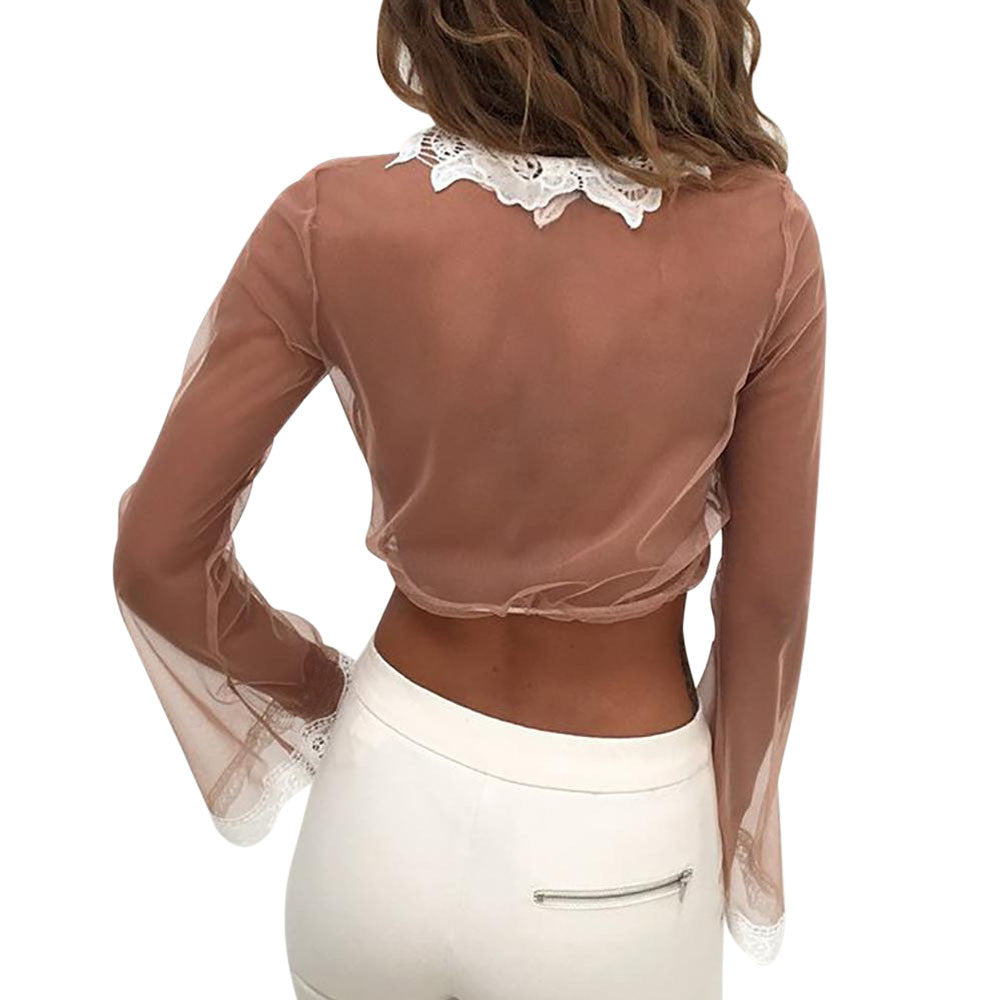 Lace Embroidered Mesh Long Sleeve Blouse