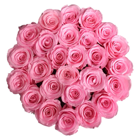 White Round - Small Pink Roses - INFINI roses that last a year