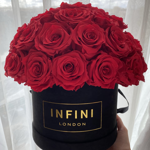 Infini Cashmere Dome - INFINI roses that last a year