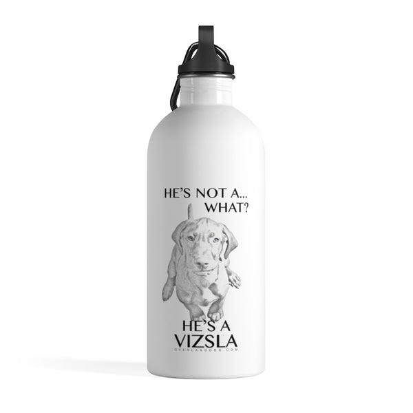He's Not A What! He's A Vizsla - Art - Stainless Steel Water Bottle