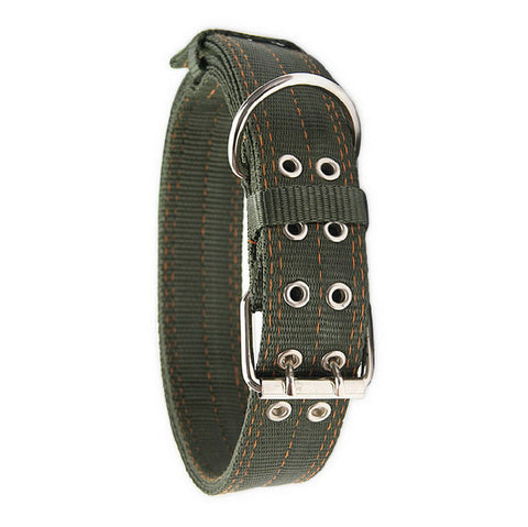 Army Green Premium 2-Row, Double Buckle Nylon Dog Collar