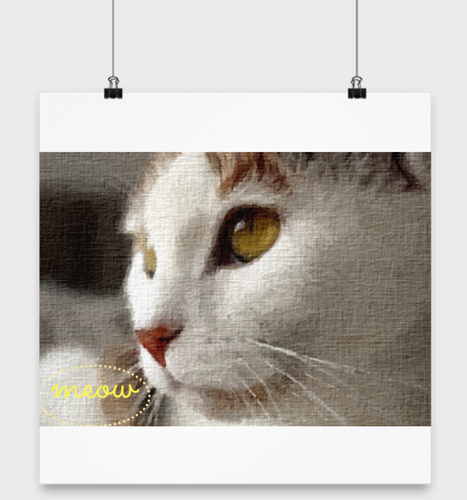 14 x 14 KITTY POSTER