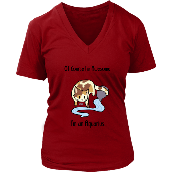 Aquarius Cat Zodiac - Women's V-Neck