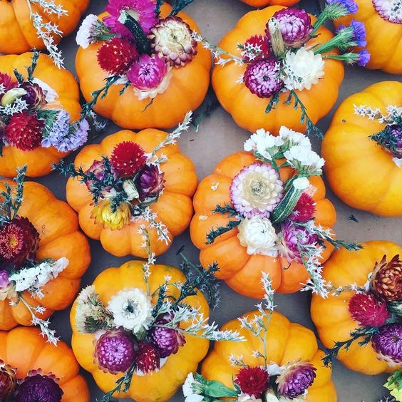 Pumpkin Spice and Everything Nice: Amp up Your Autumn Decor