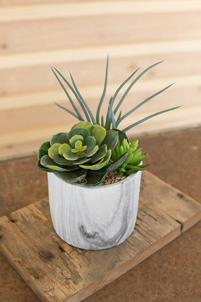 Succulent Trio in Faux Marble Pot