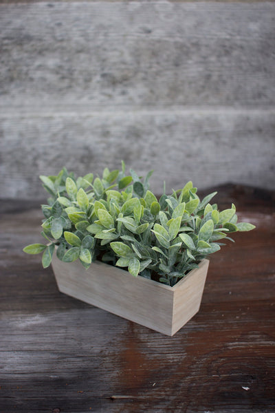 Artificial Thyme in a Wooden Planter