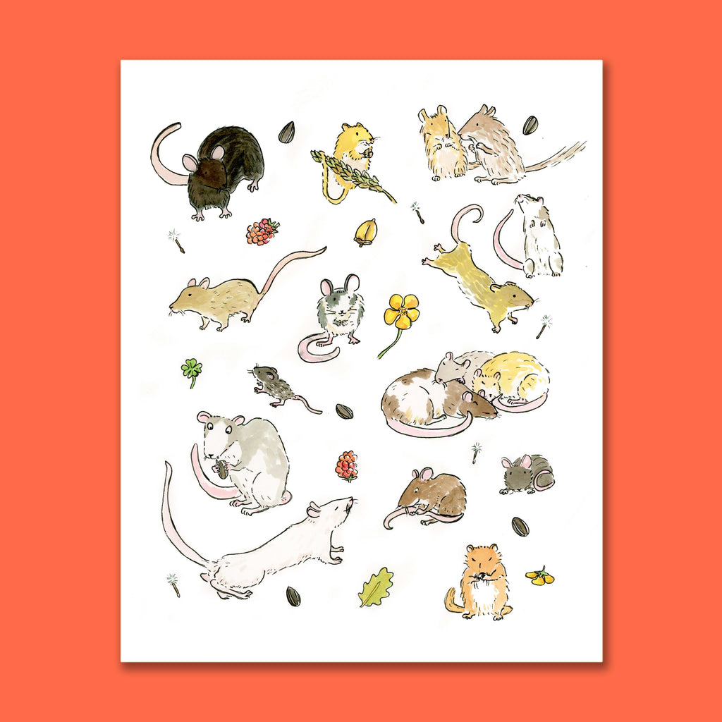 Year of the Rat Art Print