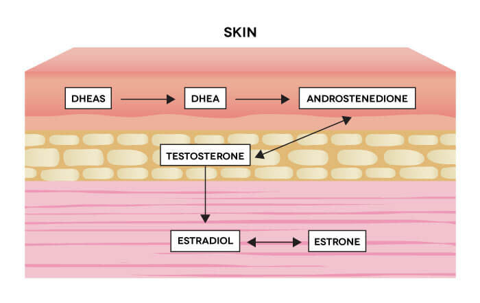 BePure Skin Health Diagram