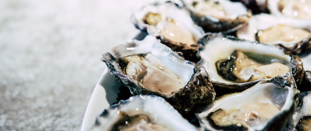 oysters for zinc