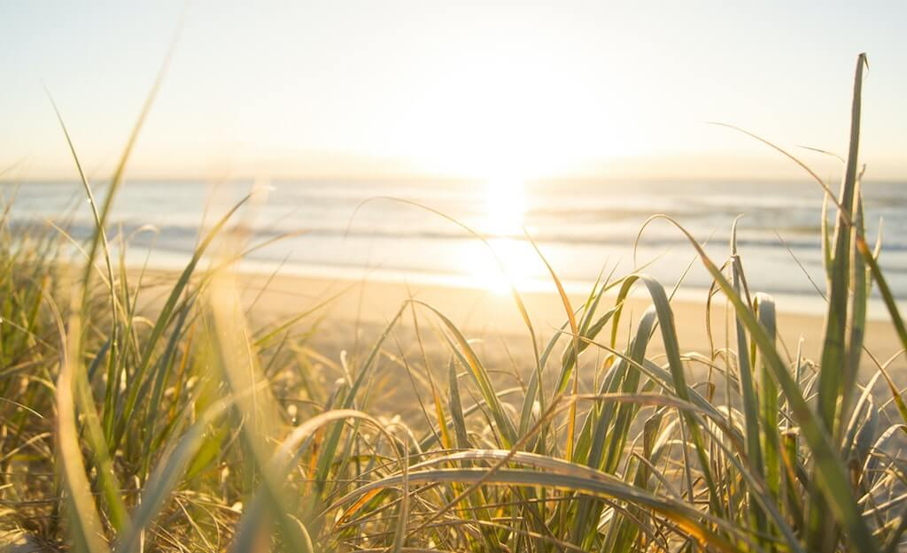 a sunny beach with grass to get vitamin d for good gut health
