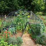 Ready to build: 4.8m (16') Walk In Vegetable / Fruit Cage Dome