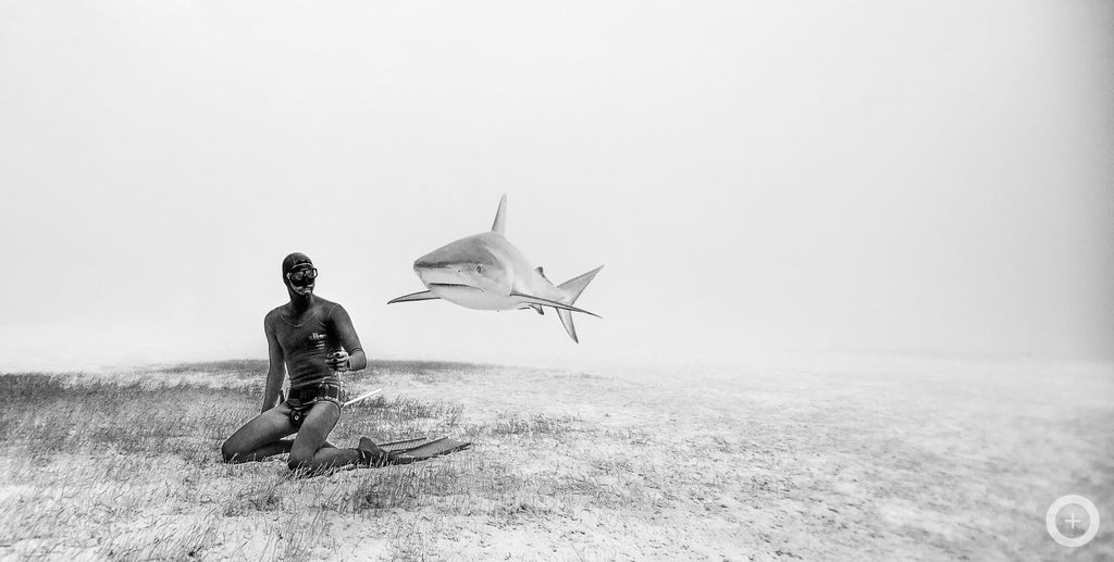 Meet the Freediving Couple Who Make Stunning Underwater Photos on one Breath