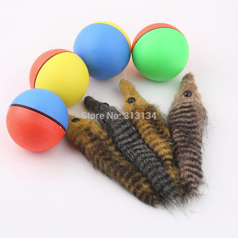 Motorized Rolling Weasel - Dollar Dog Toys