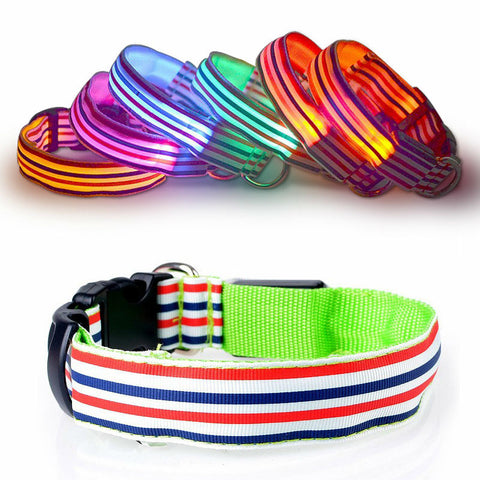 Nylon Stripe LED Luminous Dog Collar size S-XL for Large and Small Dogs - Dollar Dog Toys