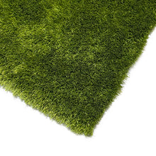 RugBerry Aroma Collection 1-inch Thick Shag Rug 5' x 7' ft Green