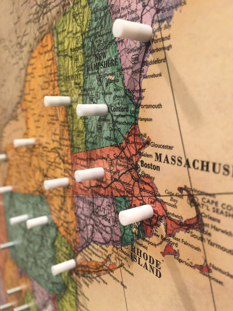 Magnetic Plastic Map Pins - 40 Ct.