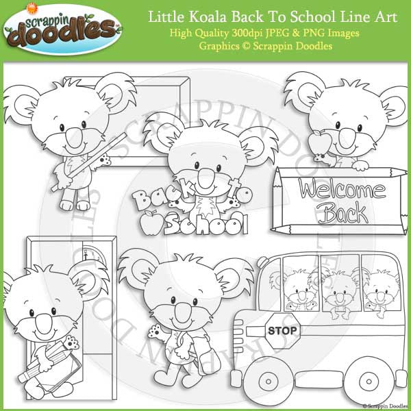Little Koala Back To School