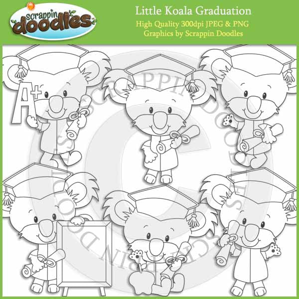 Little Koala Graduation