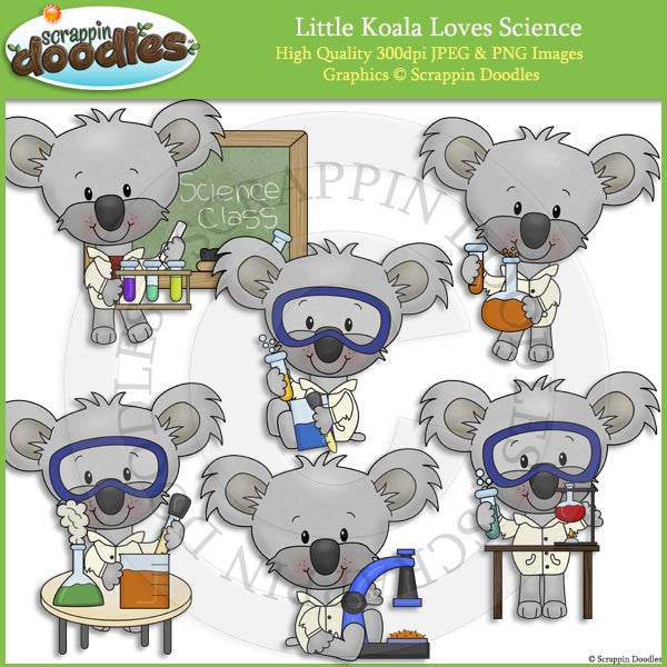 Little Koala Loves Science Clip Art