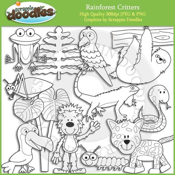 Rainforest Critters
