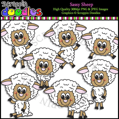 Sassy Sheep