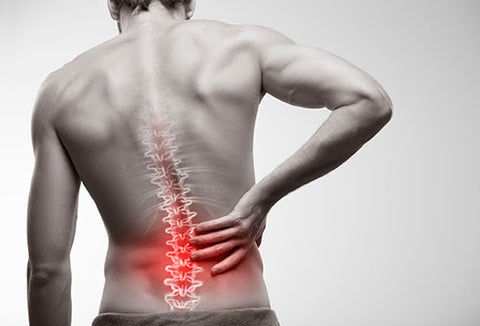CBD back pain