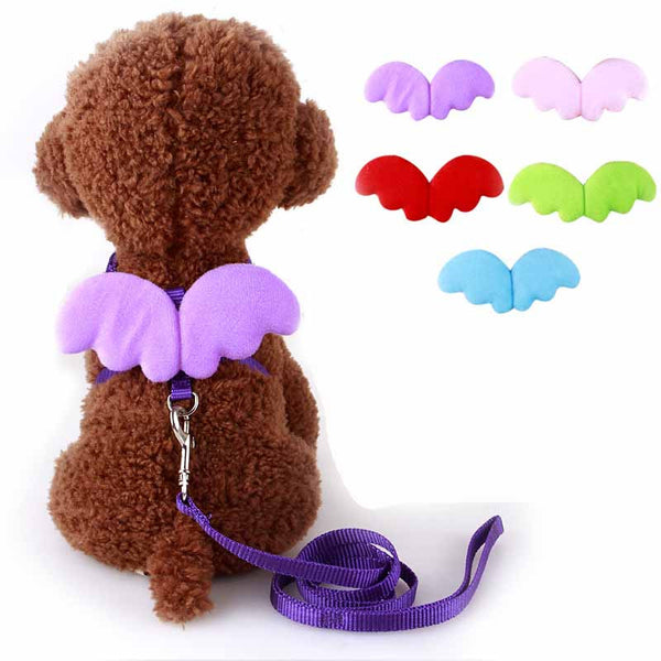 Cute Angel Pet Dog Leashes and Collars Set Puppy Leads for Small Dogs Cats Designer Wing Adjustable Dog Harness Pet Accessories - Amariah's