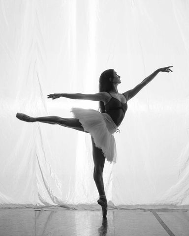 emily reed grand rapids ballet
