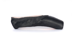 Fabric Pointe Paint | Rajani (Black)