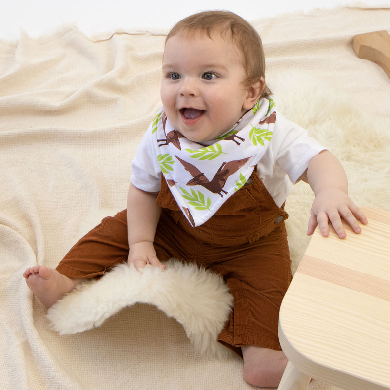 Jurassic Adventure - Shop Silicone Feeding Bibs and more Baby Essentials Online
