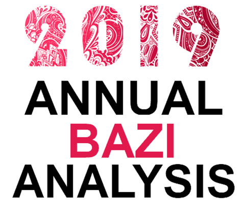Bazi Consultation 2019 (Month wise analysis)