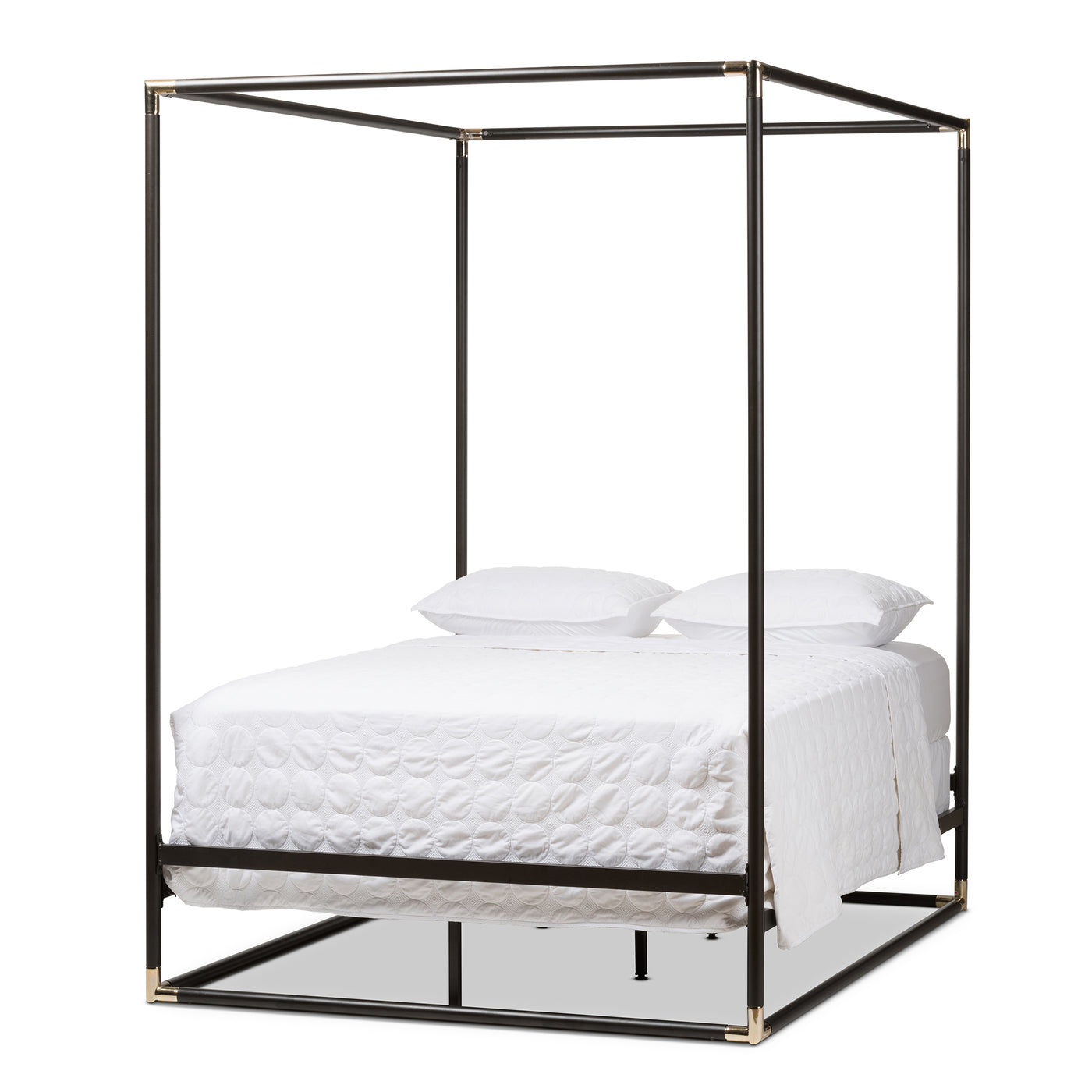 - Baxton Studio Eva Black Metal Canopy Queen Bed – HipBeds.com