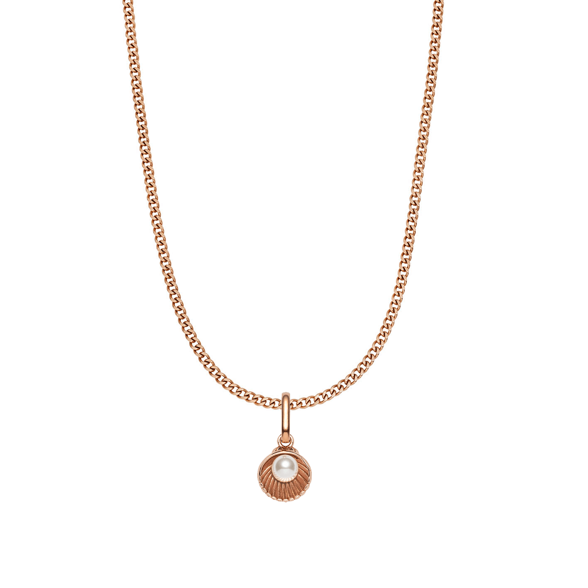Pearl Shell Small Curb Chain Necklace (Rose Gold)