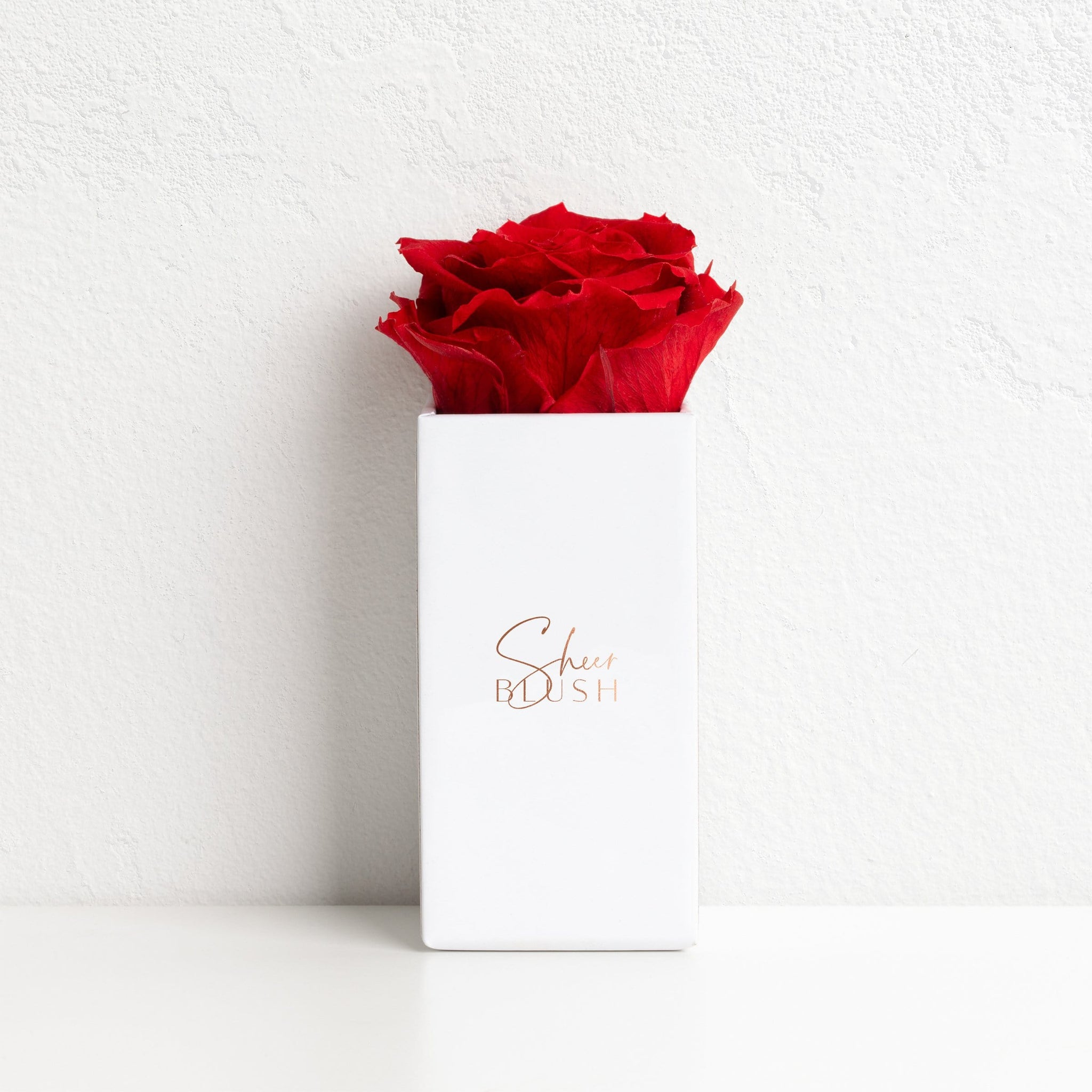 Heart Knot Eternal Rose Gift Set (Ruby)