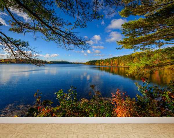 Wall Mural Lake in Autumn, Peel and Stick Repositionable Fabric Wallpaper for Interior Home Decor