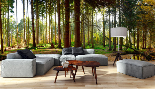 Wall Mural Thuringian Forest - Panoramic View - Peel and Stick Repositionable Fabric Wallpaper for Interior Home Decor