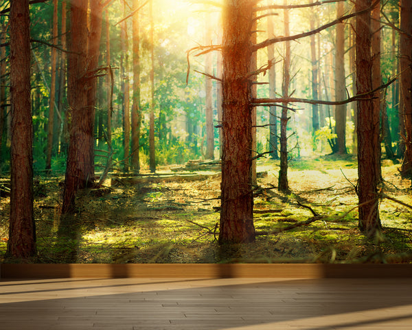 Wall Mural Pine forest, Peel and Stick Fabric Wallpaper for Interior Home Decor