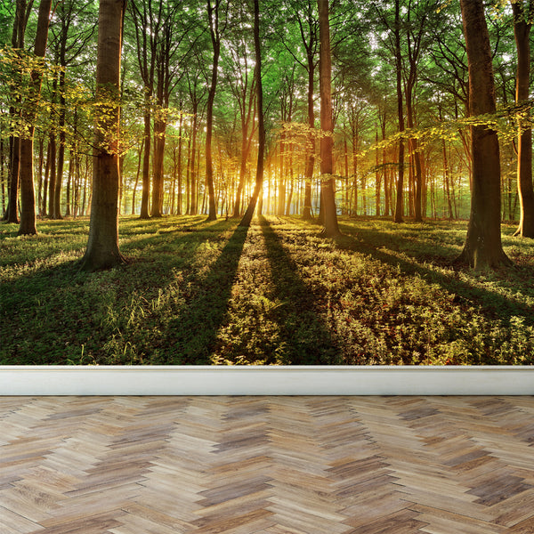 Wall Mural In the depths of a forest, Peel and Stick Fabric Wallpaper for Interior Home Decor