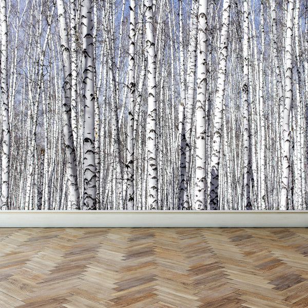 Wall Mural White Birch Trees, Peel and Stick Fabric Wallpaper for Interior Home Decor