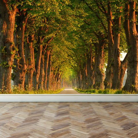 Wall Mural Country Forest Road, Fabric Wallpaper for Interior Home Decor