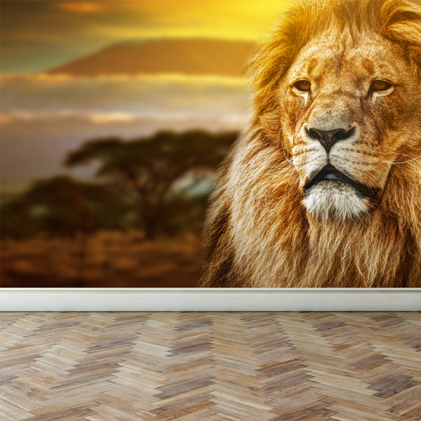 Wall Mural Lion on savanna, Peel and Stick Fabric Wallpaper for Interior Home Decor