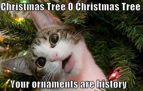 cat proof your christmas tree ornaments