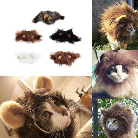 Lion Cat Wig - Two Stupid Cats